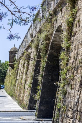 Muraglia di San Carlos